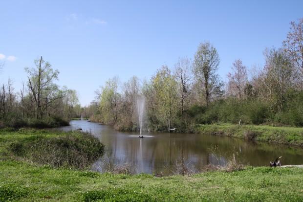 The Arbors Estates, New Orleans LA