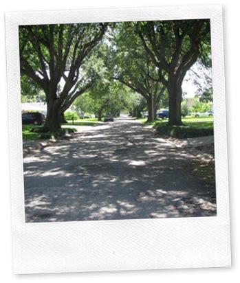 Old Aurora | New Orleans West Bank Neighborhood